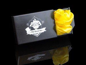 magiczne pudełko; rekwizyt, sekret, rutyna iluzjonistyczna
