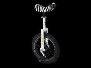 Monocykl miejski QUAX Luxus 16